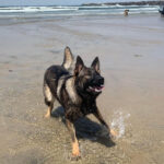 Kila at the beach